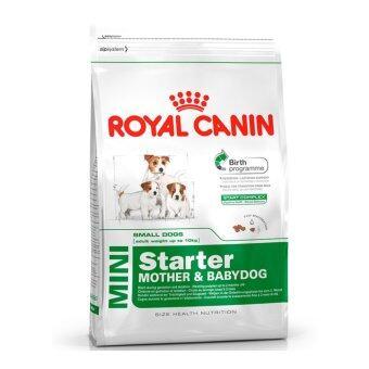 Royal Canin Mini Starter 3 kg อาหารสำหรับแม่สุนัขตั้งท้อง และลูกสุนัขพันธุ์เล็ก 3 สัปดาห์ - 3 เดือน 3กิโลกรัม