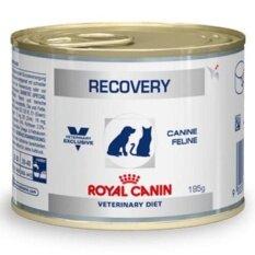 ขาย Royal Canin Recovery อาหารสำหรับสุนัขและแมว พักฟื้น 195g ( 3 units )