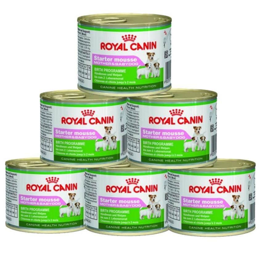 Royal Canin Starter Mousse 195g ( 6 units ) ...
