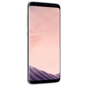 Samsung Galaxy S8+ 464GB
