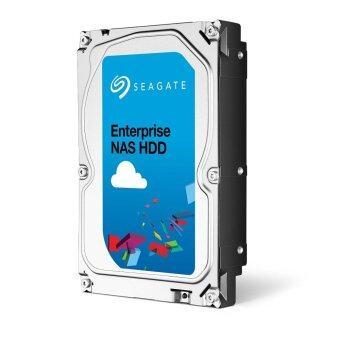 Seagate 4TB Enterprise NAS SATA 6Gb/s 128MB Cache 3.5-Inch Internal Bare Drive - intl