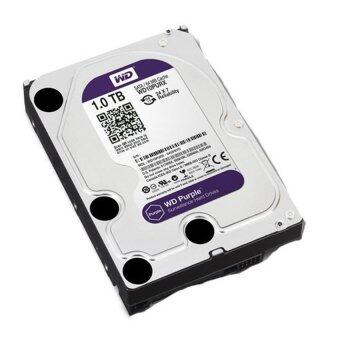 Western Purple Hard Disk PC SATA-III( Synnex)For CCTV 1TB