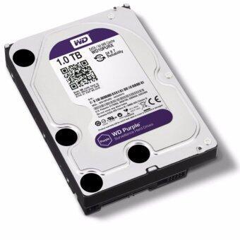 Western Hard Disk PC 1 TB SATA-III 64MB Purple For CCTV