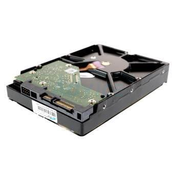 Western Hard Disk 2 TB. SATA-III Blue (64MB.)