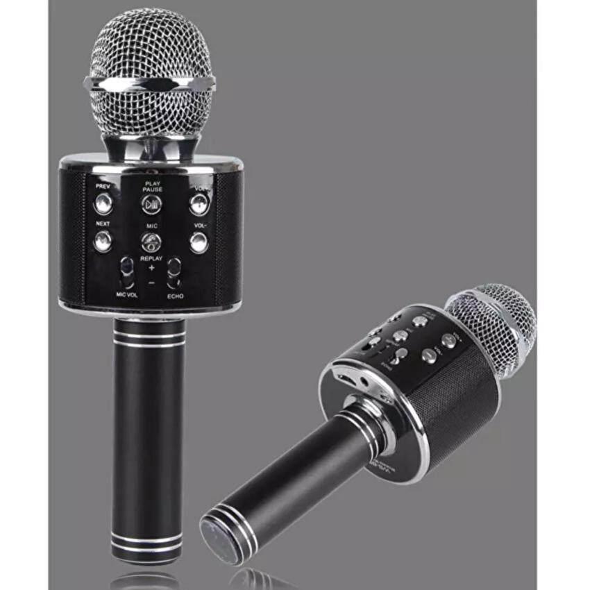 Wster Wireless Microphone HIFI Speaker WS-858