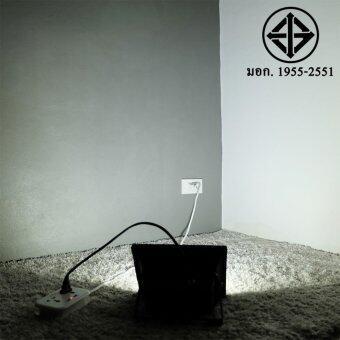 สปอตไลท์ 30W เสียบปลั้ก ใช้ได้เลย (220 V.)(แสง:ขาว)