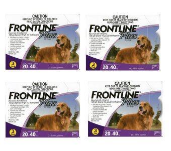 Frontline Plus for dogs 20.0 - 40.0 kg กล่องละ 3 หลอด ( 4 units )