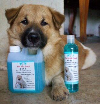 Pet and Paws แชมพูผสมครีมนวดสำหรับสุนัขและแมว สูตรอ่อนโยน บำรุงขน ผิว ไม่แพ้ 100% (image 4)