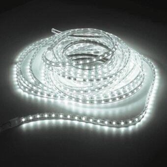 LEDANDLAMP ไฟเส้น LED ROPE LIGHT ฟรีปลั๊กยาว 8 มิลลิเมตร 2 เส้น ( แสงสีขาว )