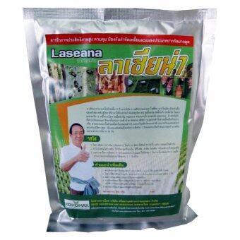 เชื้อราบิวเวอร์เรีย เมธาไรเซียม ใช้กำจัดเพลี้ย ศัตรูพืช