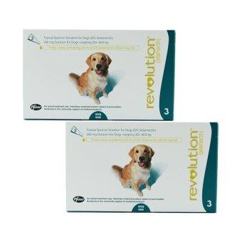 Revolution ยาหยอดกำจัดเห็บ หมัด สุนัข น้ำหนัก 20.0 - 40.0 kg กล่องละ 3 หลอด ( 2 units )