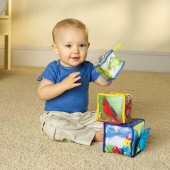 Baby Einstein Stack Discover