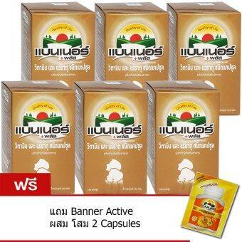 Banner Plus Vitamin & Minerals 100เม็ด (6ขวด) แบนเนอร์ พลัส
