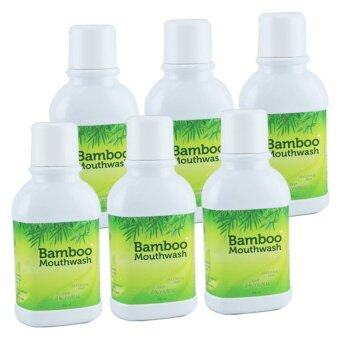 Hylife Bamboo Mouthwash น้ำยาบ้วนปาก แบมบู 300 ml. (6 ขวด)