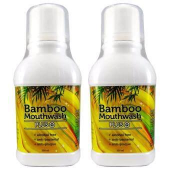 Bamboo mouthwash Plus น้ำยาบ้วนปาก แบมบูเม้าท์วอช พลัส หมดปัญหากลิ่นปาก คราบพลัค หินปูน 2 ขวด (300 ml./ขวด)