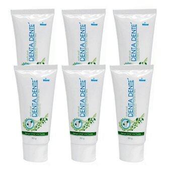 Denta Dente ยาสีฟัน Organic Fluoride ขนาด 60 g. (6 กล่อง)
