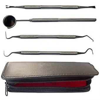 Dentist Tool Kit Stainless Steel Tarter Remover Dental - intl
