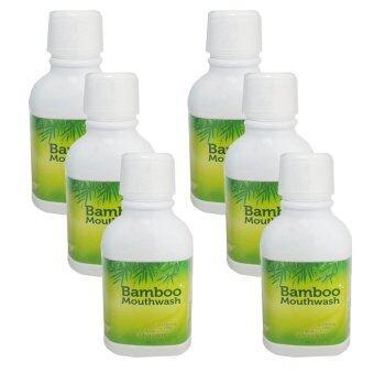 Hybeauty Bamboo Mouthwash น้ำยาบ้วนปาก ระเบิดคราบหินปูน แบมบู 300 ml. (6 ขวด)