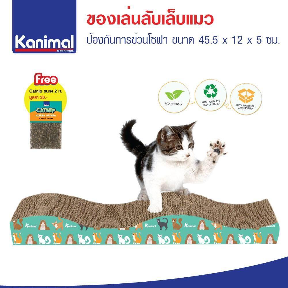Cat Toy ของเล่นแมว ที่ลับเล็บแมว รูปคลื่นกลาง สำหรับแมวทุกวัย ขนาด 45.5x12x5 ซม. ฟรี! Catnip กัญชาแมว By Kpet.