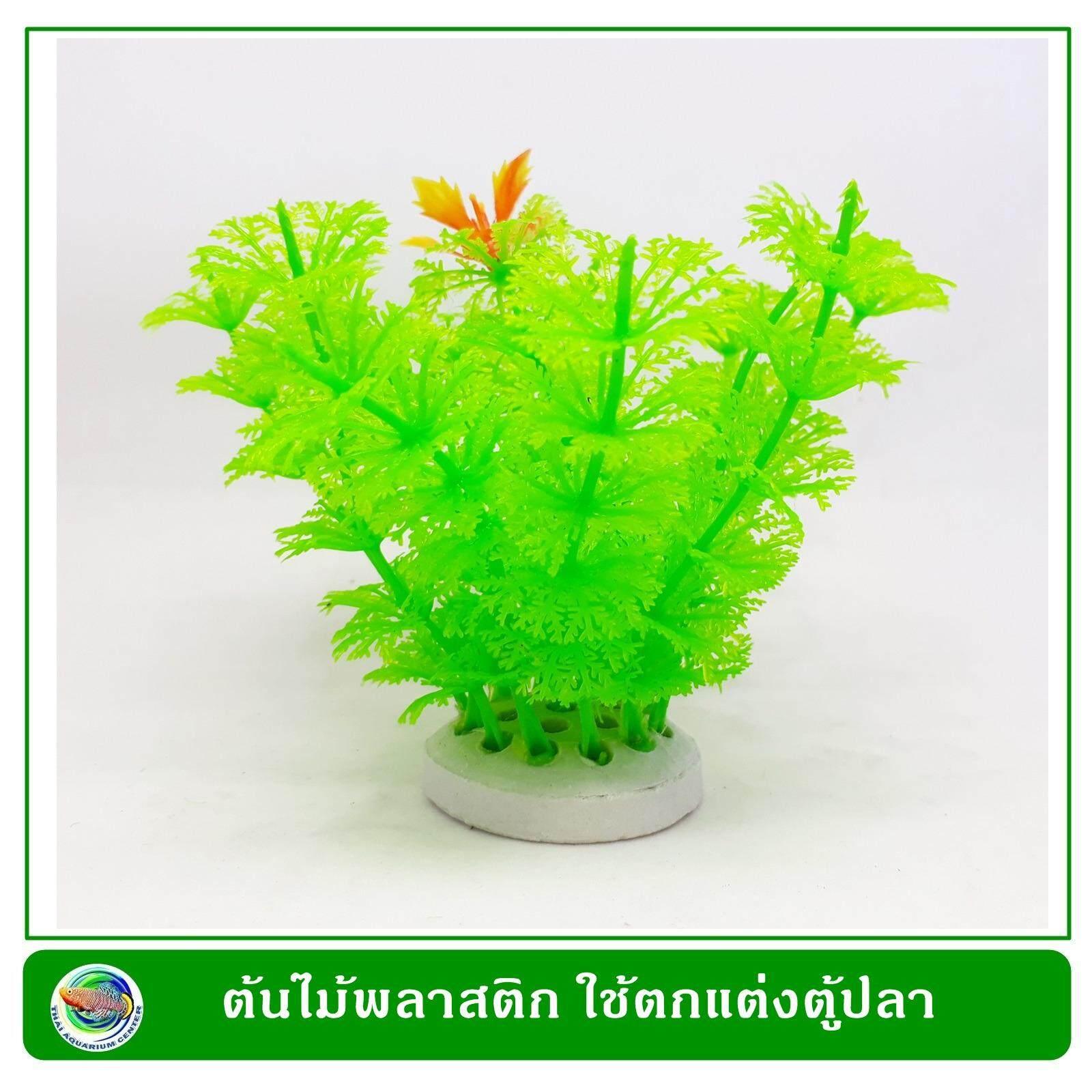 T015 ต้นไม้ทรงพุ่มสีเขียวสด ใช้ตกแต่งตู้ปลาให้สวยงาม By Thai Aquarium Center Co., Ltd..