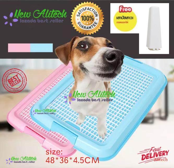 New Alitech Dog Toilet ห้องน้ำสุนัข ถาดฝึกฉี่สุนัข พร้อมเสาถอดออกได้ สำหรับสุนัขพันธุ์เล็ก Size S ขนาด 48x36x4.5 ซม. By New Alitech.
