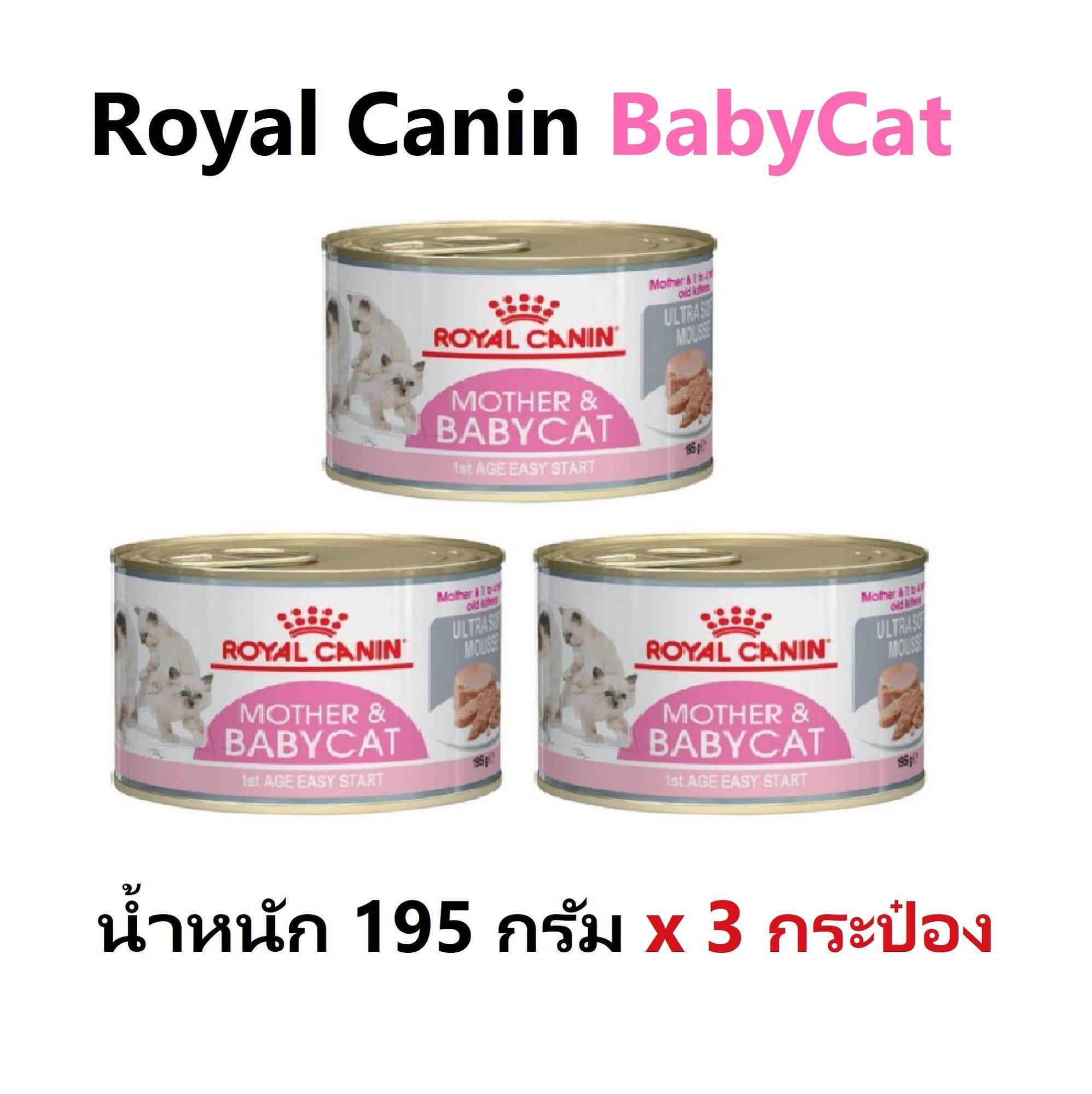 Royal Canin Babycat Can 195 G X 3 Can อาหารแมวแบบเปียก สำหรับลูกแมวและแม่แมวตั้งท้องหรือให้นมลูกแมว 195กรัม X 3กระป๋อง By Speedpets.
