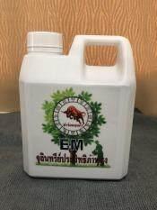 ***ราคาถูกที่สุด***น้ำ EM จุลินทรีย์ชีวภาพ เอนกประสงค์ ขนาด 1 ลิตร