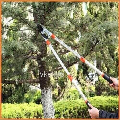 กรรไกรตัดกิ่ง กรรไกร ตัดแต่งกิ่งไม้ คีมตัดกิ่งไม้ ที่ตัดกิ่งไม้ มีดตัดกิ่งไม้ เลื่อยกิ่งไม้ ตัดกิ่งไม้สูง เลื่อยตัดกิ่ง เครื่องตัดกิ่งไม้ ตัดกิ่งไม้ กรรไกรตัดกิ่ง Solo เลื่อยกิ่งไม้.