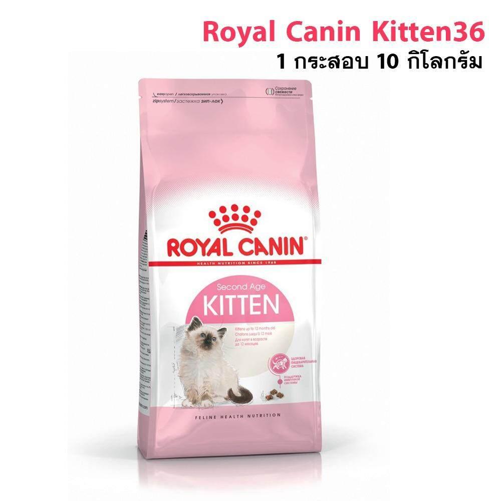 ขาย Royal Canin Kitten36 อาหารสำหรับลูกแมว อายุ 4 12เดือน ขนาด 10กิโลกรัม ถูก