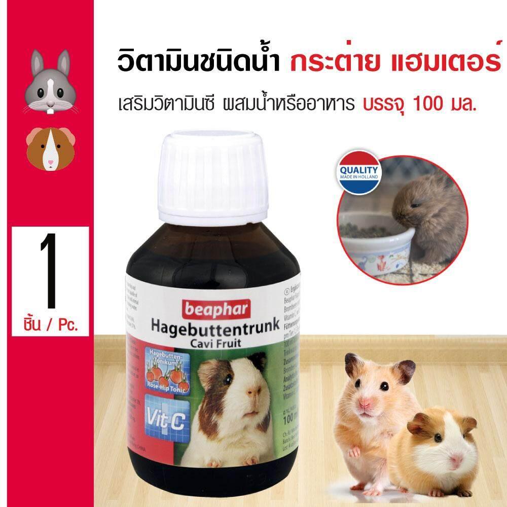 Beaphar Cavi Fruit วิตามินชนิดน้ำ วิตามินซีเข้มข้น สำหรับกระต่าย หนูแกสบี้ หนูแฮมเตอร์ (100 มล./ขวด) By Kpet.