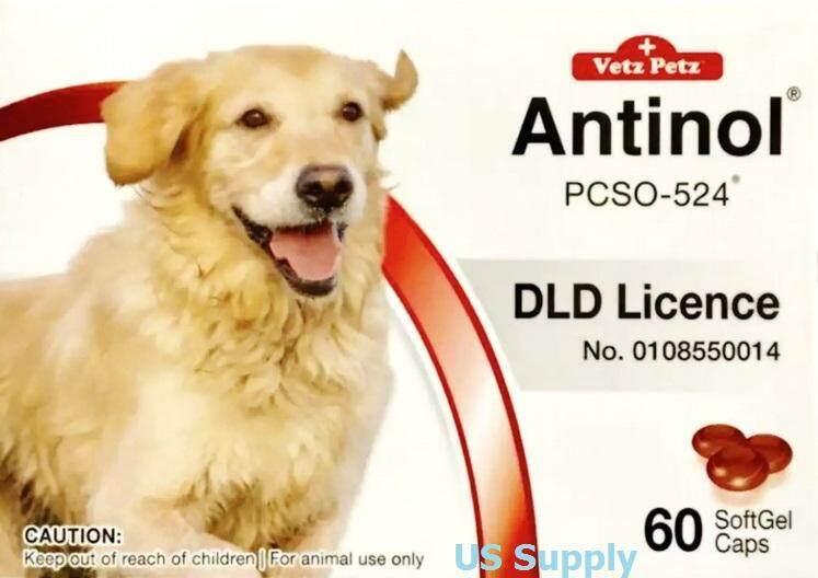ลดสุดๆ Antinol DOG (60 SoftGels) +ส่งฟรี  KERRY+ บำรุงข้อสุนัข รักษาข้ออักเสบ (หมดอายุ 08/2021) ล็อตใหม่