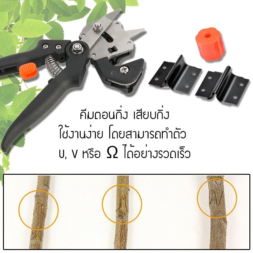 photo 1 Tree grafting Scissors_zpsu8pqsm2d.jpg