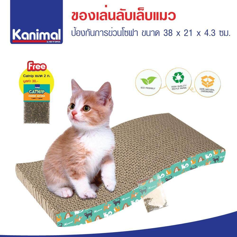 Cat Toy ของเล่นแมว ที่ลับเล็บแมว รูปคลื่นกลาง สำหรับแมวทุกวัย ขนาด 38x21x4.3 ซม. ฟรี! Catnip กัญชาแมว By Kpet.