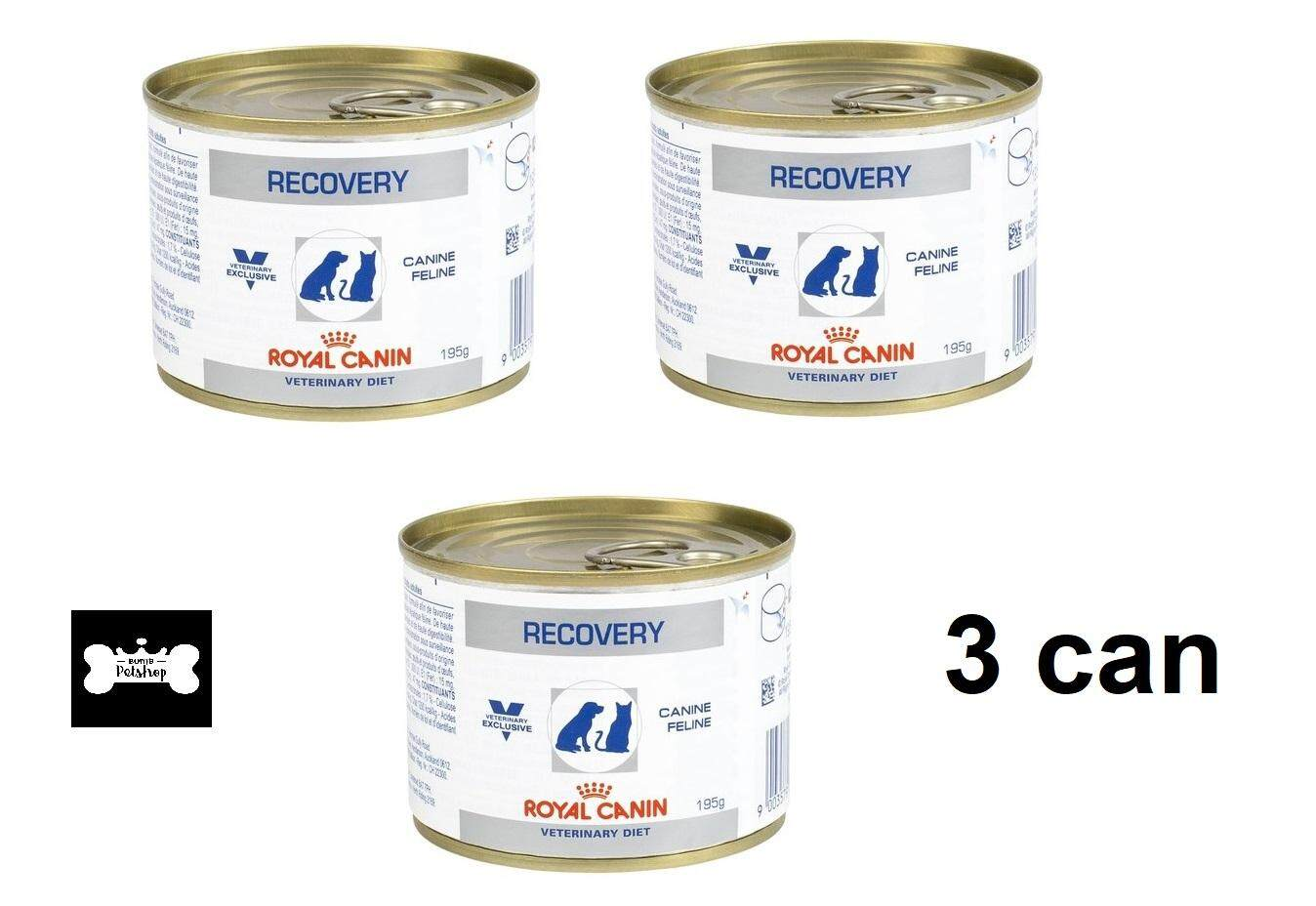 Royal Canin Thailand Www 30 Persian Adult 500 Gr Recovery 195g 3 Units