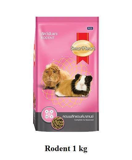 Smartheart Rodent 1 Kg อาหารสัตว์ฟันแทะ กระต่าย หนู 1 กก. By Speedpets.