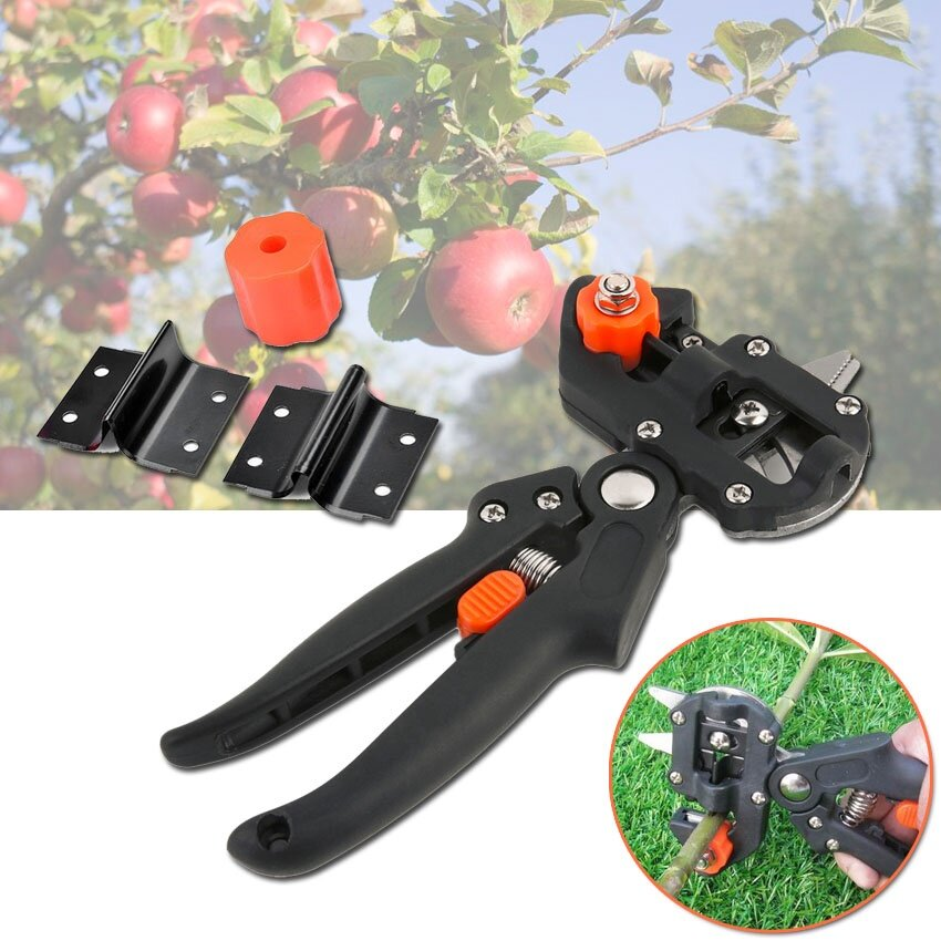 photo 0 Tree grafting Scissors_zpspqdinzcb.jpg