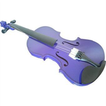 Student Acoustic Violin 4/4 (Purple)