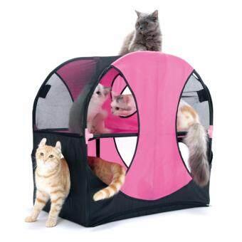 ของเล่นแมว Cat Wheel of Fun เต็นท์บ้านวงล้อมหาสนุก เหมียวเล่นกันสนุกสนาน ถูกใจ ถอดซักได้ (ญี่ปุ่น)