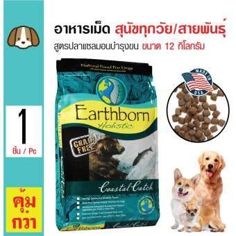 Earthborn Holistic อาหารสุนัข สูตรปลาแซลมอน บำรุงขนและผิวหนัง สำหรับสุนัขทุกช่วงวัย ทุกสายพันธุ์ ขนาด 12 กิโลกรัม