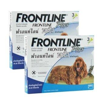 Frontline Plus ยาหยอดกำจัดเห็บ หมัด สุนัข น้ำหนัก 10-20 kg บรรจุ 2 กล่อง (กล่องละ 3 หลอด)