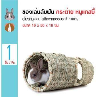 Living World ของเล่นสัตว์เล็ก อุโมงค์มุดเล่น ธรรมชาติ 100% สำหรับกระต่าย หนูแกสบี้ ขนาด 16x50x16 ซม.