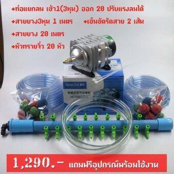 ปั้มออกซิเจน เติมอากาศ HAILEA รุ่น ACO-208 แถมฟรีท่อแยกลม20ช่องและอุปกรณ์พร้อมใช้งาน