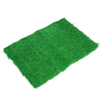 Harga L Size Dog Cat Toilet Mat Indoor Potty Trainer Artificial Grass Turf Patch Pad - intl