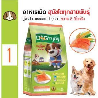 Dog 'n Joy อาหารเม็ดสุนัข สูตรปลาแซลมอน บำรุงผิวหนังและขน สำหรับสุนัขโตทุกสายพันธุ์ ขนาด 2 กิโลกรัม