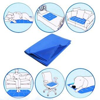 Harga Pet Dog Cat Summer Cooling Bed Ice Pad Cushion Mat XL - intl