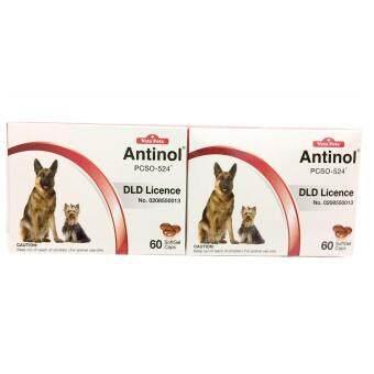 Vetz Petz Antinol 60 Softgel capsules อาหารเสริมสกัดจากธรรมชาติ 100 % สำหรับสุนัขและแมว x 2 กล่อง
