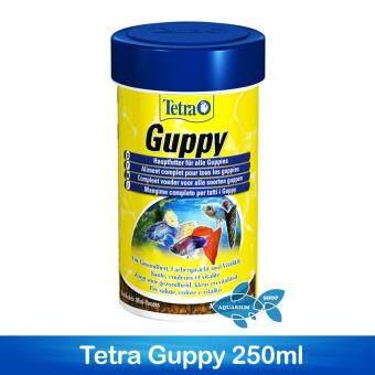 Tetra Guppy 250ml อาหารปลาหางนกยูง