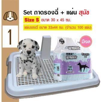 Dog Toilet ถาดฝึกฉี่ ถาดรองฉี่ ห้องน้ำสุนัข แบบมีเสา Size S 30x45 ซม. + Cocoyo แผ่นรองซับสัตว์เลี้ยง แผ่นรองฉี่สุนัข แบบมีเจล ไซท์เล็ก 33x44cm (100 แผ่น)