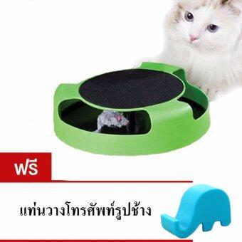 ของเล่นแมวไล่จับหนู