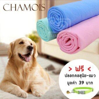 ผ้าชามัวร์เอนกประสงค์ ผ้าเช็ดตัวสุนัข-แมว (3 ผืน)คละสี แถมฟรีปลอกคอสุนัข-แมว (คละลาย)